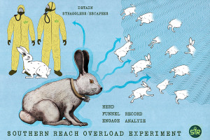 Jeff Vandermeer, Southern Reach Trilogy, Rabbit Totem, illustrated by Jeremy Zerfoss